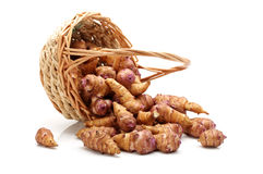Jerusalem artichoke Stock Images