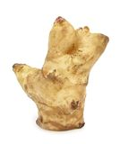 Jerusalem artichoke sunroot sunchoke tuber Stock Photography