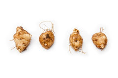 Jerusalem artichokes Royalty Free Stock Photography