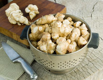 Jerusalem artichokes in a colander stock photo
