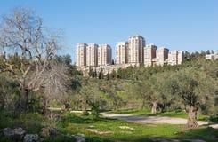 Jerusalem - Emek HaMatsleva - Rehavia Park and modern residencial buildings. Stock Image
