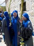 jerusalem gömma i handflatan sunday Royaltyfri Foto