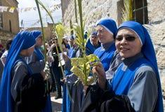 jerusalem gömma i handflatan sunday Royaltyfria Foton