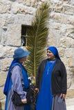 jerusalem gömma i handflatan sunday Royaltyfri Fotografi
