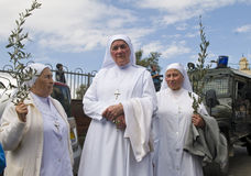 jerusalem gömma i handflatan sunday Royaltyfria Bilder