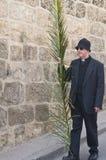 jerusalem gömma i handflatan sunday Arkivbilder