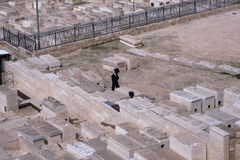 JERUSALEM, ISRAEL - 27 FEB 2017 - Jew praying at the Mount of Olives Jewish Cemetery Royalty Free Stock Photos