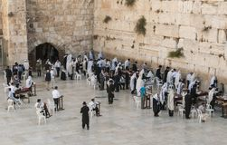 People at the wester wall of Jerusalem royalty free stock images