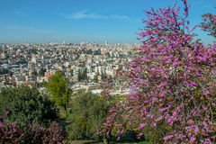 Jerusalem, Israel, view of the city Royalty Free Stock Images
