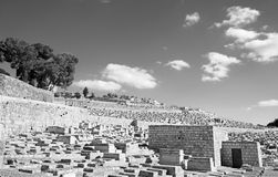 Jerusalem - jewish cemetery on the Mount of Olives. Royalty Free Stock Photography