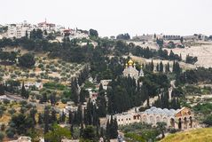 Jerusalem, Mount of Olives Stock Images
