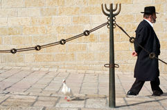 The Kotel - Israel Royalty Free Stock Photography