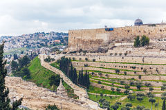 Jerusalem Old City an Ancient Wall Stock Image