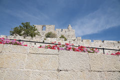 Jerusalem Old City and Walls Stock Image