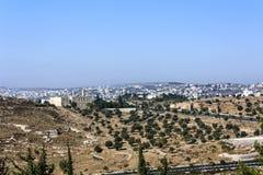 Jerusalem Olive Tree Field och Mars Elias Monastery Arkivbild