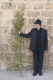 Jerusalem Palm sunday Stock Image