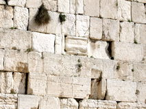 Jerusalem stones of Western Wall 2008 Stock Photos