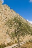 Jerusalem wall Royalty Free Stock Images