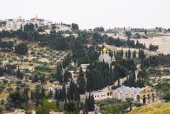 Jeruzalem, Onderstel van Olijven stock afbeeldingen