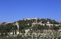 Jeruzalem, Onderstel van Olijvenkerken royalty-vrije stock afbeeldingen