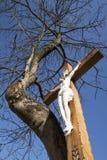 Jesús crucificado Imagen de archivo