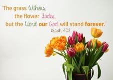 Jesaja-40:8 Stockfotografie