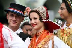 Jeseni van Vinkovacke stock fotografie