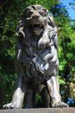 Jesenik温泉雕象-狮子 库存图片
