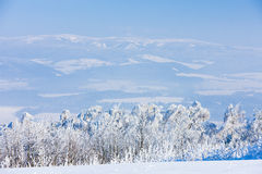 Jeseniky Mountains Royalty Free Stock Photos