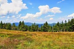 Jeseniky mountains (czech republic) Stock Image