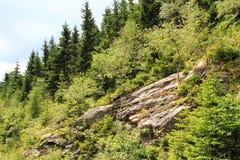 Jeseniky mountains (czech republic) Stock Photo