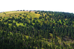 Jeseniky mountains (czech republic) Royalty Free Stock Images