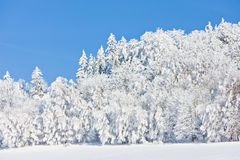 Jeseniky Mountains in winter Stock Photography