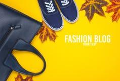jesień inkasowy kolorowy kabaczka stół Moda blog obraz stock