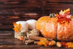 jesień pojęcia odosobniony biel Bania, acorns, żółci liście, cynamon na ciemnym tle obraz royalty free