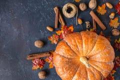 jesień pojęcia odosobniony biel Bania, acorns, żółci liście, cynamon na ciemnym tle obrazy stock