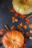 jesień pojęcia odosobniony biel Bania, acorns, żółci liście, cynamon na ciemnym tle zdjęcia royalty free