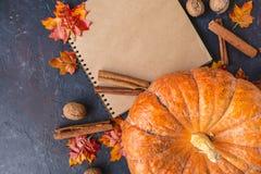 jesień pojęcia odosobniony biel Bania, acorns, żółci liście, cynamon na ciemnym tle fotografia stock