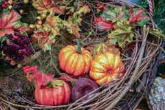 Jesień skład z baniami, liśćmi i jagodami, obrazy royalty free
