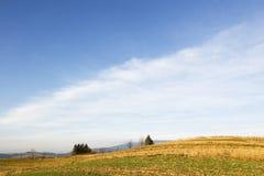 jesień łąka Zdjęcia Royalty Free