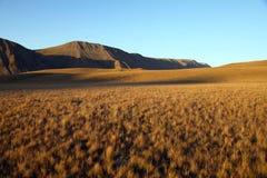 jesień łąki Zdjęcia Royalty Free