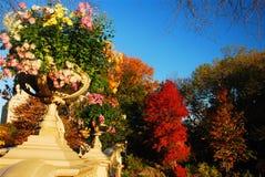 Jesień, łęku most, centrala park fotografia royalty free
