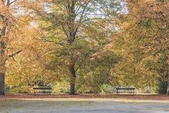 jesień ławek parkowa sceneria Fotografia Stock