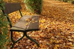jesień ławka Obraz Stock