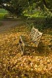 jesień ławka Obrazy Stock