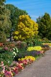 jesień ławki kolorowy puszek spadać liść parkują drzewa Obraz Stock