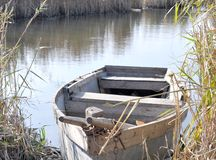 jesień łodzi płochy Obraz Stock