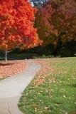 jesień ścieżka Zdjęcie Royalty Free