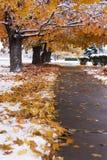 jesień śnieg Zdjęcie Royalty Free