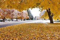 jesień śnieg Zdjęcie Stock